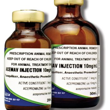 Acemav_Injection