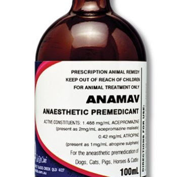 Anamav_Injection